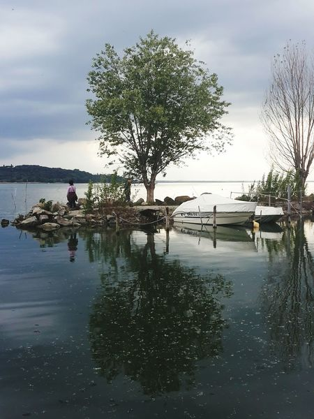 Reflection Water Tree Lake Outdoors Silhouette Nature Sky Adult Day Beauty In Nature People Trasimenolake
