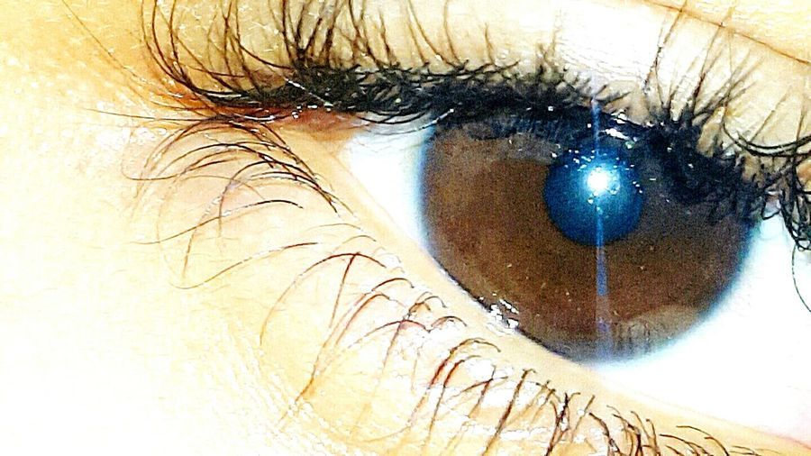Brown eyes Human Body Part Close-up Human Eye Eyelash Extreme Close-up Eyesight One Woman Only One Person Adults Only People Iris - Eye Sensory Perception Adult One Young Woman Only Only Women Eyeball Young Adult Outdoors Day First Eyeem Photo