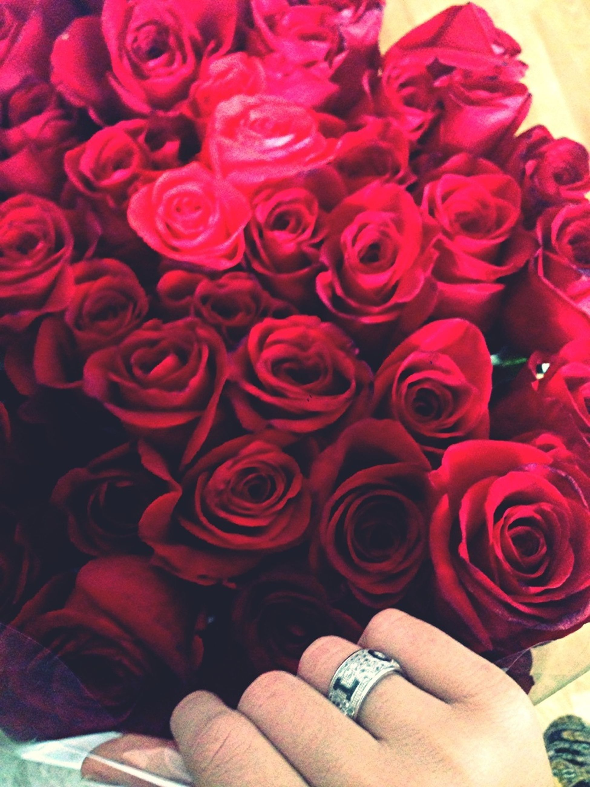 indoors, flower, person, red, lifestyles, pink color, high angle view, holding, part of, petal, leisure activity, close-up, bouquet, cropped, fragility, multi colored