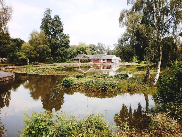 Lake Pond Water Greenery Chalet Building Trees Grass