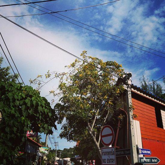 Kohlipe Walkingstreet