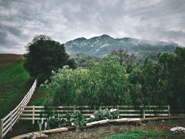 """""""One Mans Paradise"""" A small ranch, guarded by fence and trees, sits at the base of Mt. Diablo near the town of Clayton, California. White Fences Fence Mountain Top Cloudy Day Cloudy Growth Tree Sky Nature Cloud - Sky Green Color Mountain Landscape Land Beauty In Nature"""