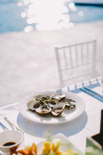 Close-up of oysters served in plate at poolside