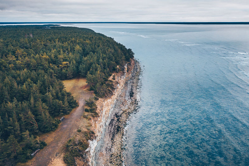 Panga Cliff Eesti Estonia Europe Travel Saaremaa Drone  Aerial Aerial View Mavic 2 Mavic 2 Pro DJI X Eyeem Panga Cliff Panga Pank Birds Swans White Swan Estonian Nature Sea Water Scenics - Nature Beauty In Nature Cloud - Sky Nature Day Tranquil Scene Environment Land Sky No People Tranquility Plant High Angle View Outdoors Beach Landscape Tree Horizon Over Water