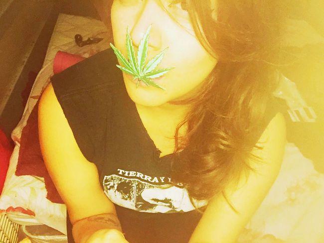 Faded Well Evaded. FadedBeauty Smoker #highlife ToxicEye 9002sick LALOVE MOTA Motavation Faded Nights BadGirly Los Angeles, California
