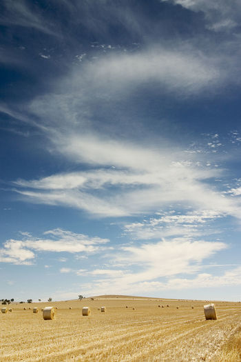 Beautiful Sky Beauty In Nature Cloud - Sky Clouds And Sky Day Desert Farm Farm Life Landscape Nature No People Outdoors Sand Sand Dune Scenics Sky Star - Space Wheat Wheat Field