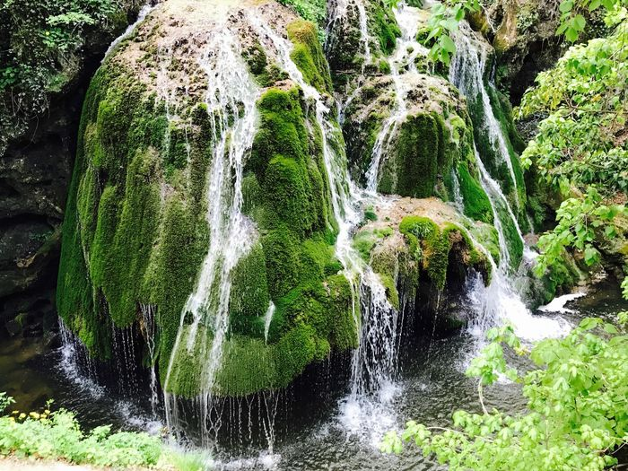 Bigar Waterfall Green Color Beauty In Nature Motion No People Nature Water Moss Tranquility Outdoors Freshness
