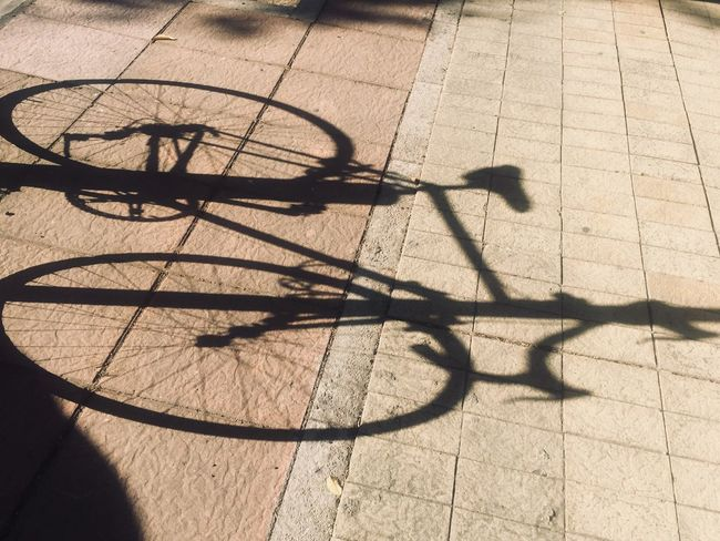 Summertime Summer Shadow Sunlight Nature High Angle View Day Bicycle Transportation Shadow Sunlight Nature High Angle View Day Bicycle Transportation Focus On Shadow No People Mode Of Transportation Sunny Outdoors Paving Stone City Street Wheel