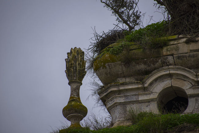 Mosteiro de Seiça - Figueira da Foz Church Portugal Architecture Convent Convento Day Monestary Mosteiro Nature Old Old Buildings Old Ruin Outdoors Tourism Tower Tree