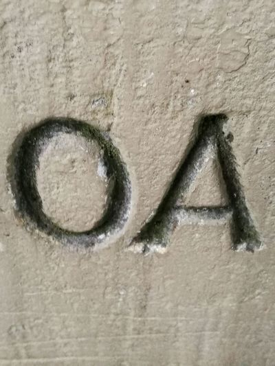 No People Full Frame OA Close-up Western Script Part Of Letters Stone Wall Engraved Beige Exposed To The Elements