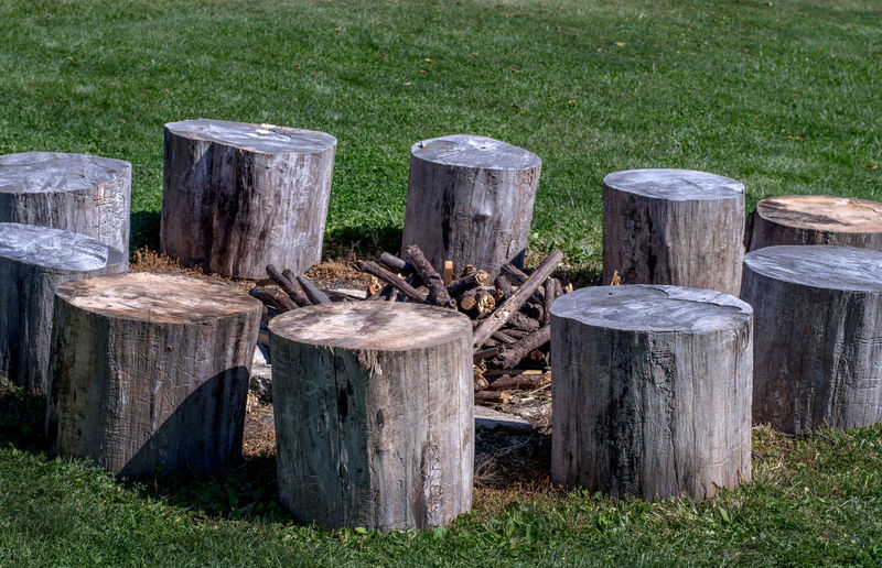 Wooden posts on field