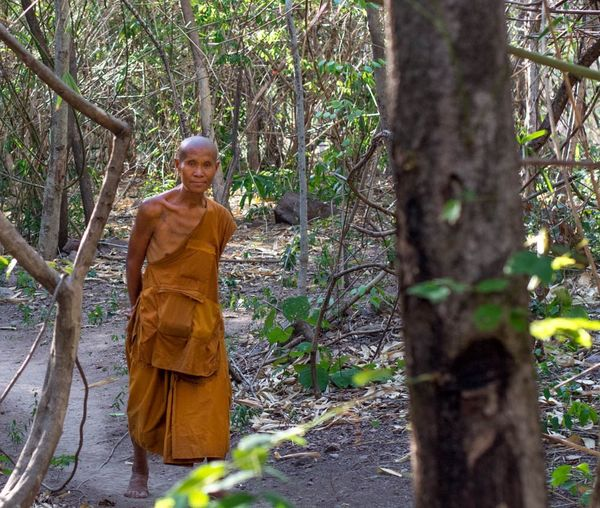 Jungle Buddhist Monks Recluse
