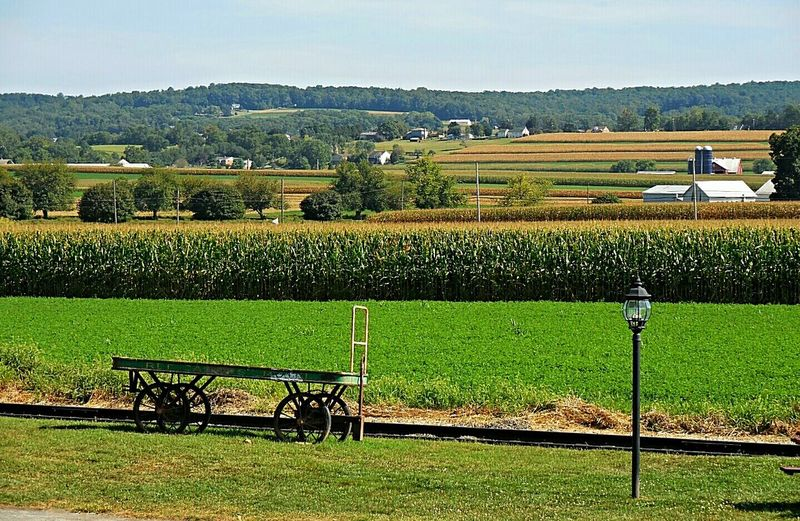 Amish Country PA Agriculture Beauty In Nature Cultivated Land Day Fence Field Fine Art Photography Grass Grassy Green Green Color Growth Idyllic Landscape Nature No People Non-urban Scene Outdoors Rural Scene Scenics Sky Tranquil Scene Tranquility Lancaster County