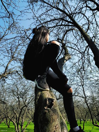 Low angle view of woman on tree trunk against sky