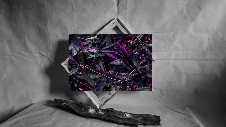 Dark Leaves. http://etsy.me/2nPhWAp ArtWork Art And Craft Art Photography Artgallery Artoftheday Artistic Expression Darkness And Light Artofvisuals Gallery_of_all Full Frame Etsyseller Art, Drawing, Creativity Art Gallery Dark Photography Darkness And Beauty Dark Edit Beauty In Nature