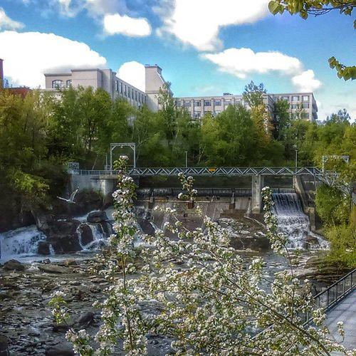 Sherbrooke, il y a des jours ou tu va me manquer et d'autre non. Il me reste seulement un mois avant de déménager. Sherbrooke City HDR Beautiful Paysagehurbain Paysage Coindeville Quebec Oiseau