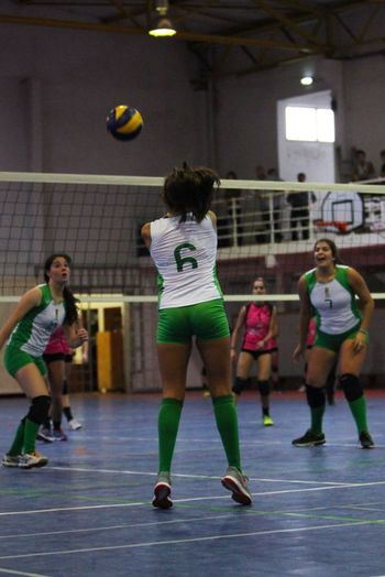 Full Length Sport Competition Ball Court Group Of People Playing Standing Practicing Girls Friendship Sports Uniform EyeEmNewHere Volleyball - Sport Sports Team Education People School Gymnasium Young Women Indoors