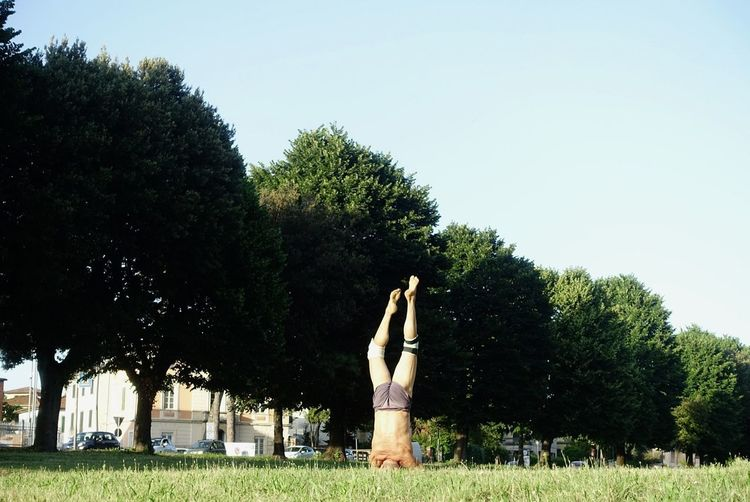 Woman by trees on field against clear sky