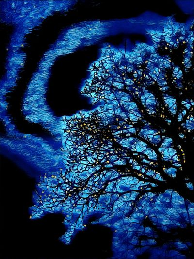 Low angle view of silhouette trees against blue sky at night