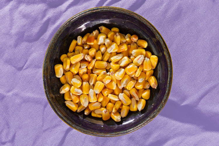 A bowl of dried corn. Autumn Fall Beauty Seeds Seeds Of Life Bowl Bowl Of Corn Close-up Corn Corn Kernels Directly Above Dried Corn Fall Food Food And Drink Freshness Grain Harvest Harvesting Healthy Eating No People Purple Studio Shot