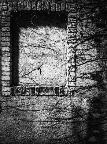 Learn & Shoot: After Dark Nice Views Just Around Home Blind Windows Porcia Italy Travel Traveling Travel Photography Night Photography Night Lights Night Shades Night Reflections Mobile Photography Art Fineart Mobile Editing Handheld Smartphone No Tripod