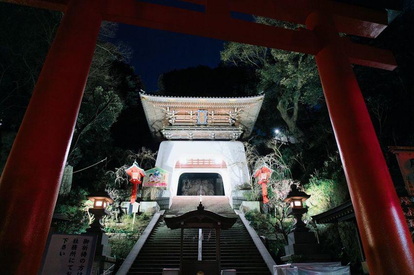 Streetphotography Japan Enoshima Kamakura Spirituality Built Structure Architecture Religion Place Of Worship Shrine Statue Night Illuminated Nature