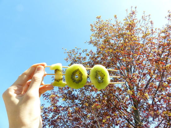 100 Followers, this is for you, i hope you'll enjoy! 😀Clear Sky Cropped Followers Food Food And Drink Freshness Fruit Fruit & Light Green Color Hand Healthy Eating Holding Human Finger Kiwi Leisure Activity Lifestyles Part Of Person Personal Perspective SLICE Spring Tree Tree Unrecognizable Person