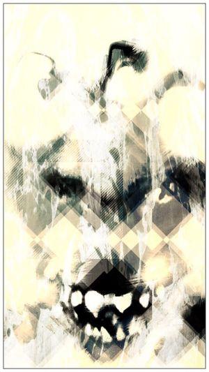 Wolf / Photo -