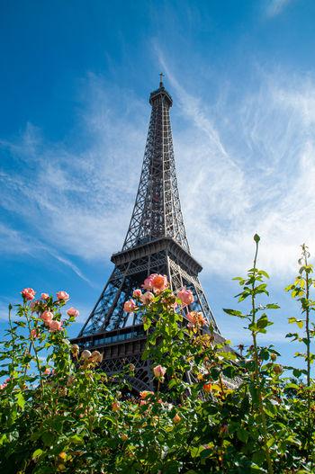 La tour Eifel