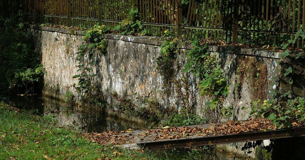 Jardins d'eau Jardin Parc Bleneau Village Commune Puisaye Coeurdepuisaye Yonne Yonnetourisme Grainedenature Eau