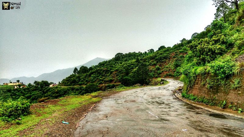Roads are made for journeys not destinations 🇮🇳 Beauty In Nature Mountain Nature Green Color Outdoors No People Sky Scenics Landscape Tree Day Freshness Tea Crop Cloud - Sky Mountain Range Rainy Days☔ Nature_collection Traveldiary2017 Photography Photo Shoot Shotoftheday Cloudscape Dramatic Sky Green Color Beauty In Nature
