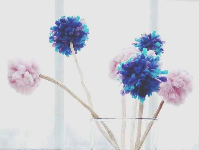 Flower No People Wool Woolenflowers Winter Morning Wintertime Color Photography Pictureoftheday Handmade