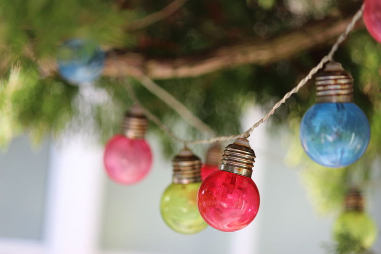 Hanging Decoration Focus On Foreground Red Close-up Tree No People Celebration Day Nature Outdoors Selective Focus Plant Holiday String Container Multi Colored Creativity Christmas Ornament