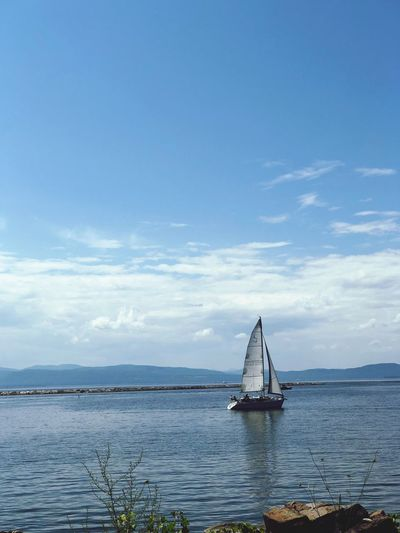 Lone sailor Summer Views Vermont_scenery Iphonephotography IPhoneography Lake Champlain Lake Champlain, Vermont, Sky, Vivid, Colors, Water Nautical Vessel Transportation Sky Sea Mode Of Transportation Cloud - Sky Beauty In Nature Sailboat Sailing Waterfront No People Blue Horizon Over Water