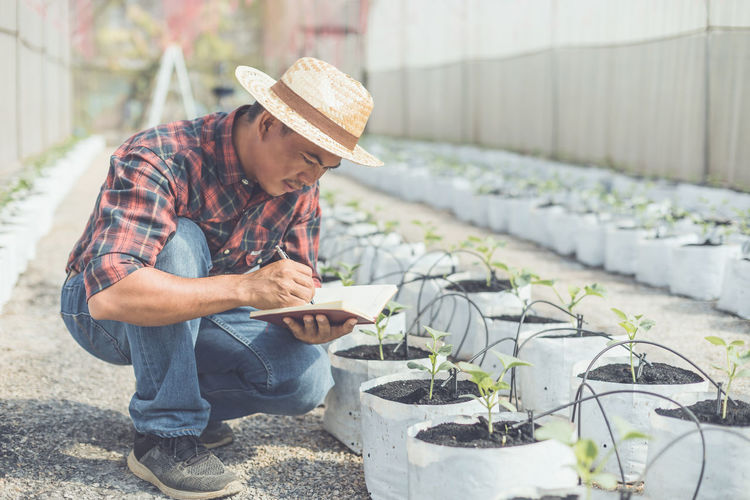 Midsection of man working by plants