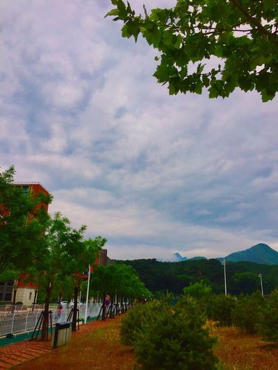 空山新雨后 Sky Tree Nature Outdoors Beauty In Nature