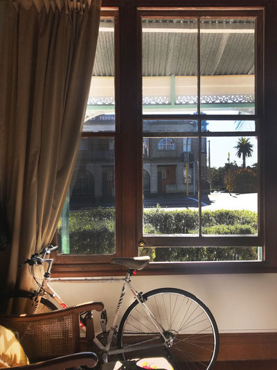 Plam Tree Retro Apartment Bicycle Bike Cosy Curtain Home Interior IPhoneography Inside Interior Design Peaceful Retro Bike Road Bike Streetphotography Sunshine Vintage Window EyeEmNewHere