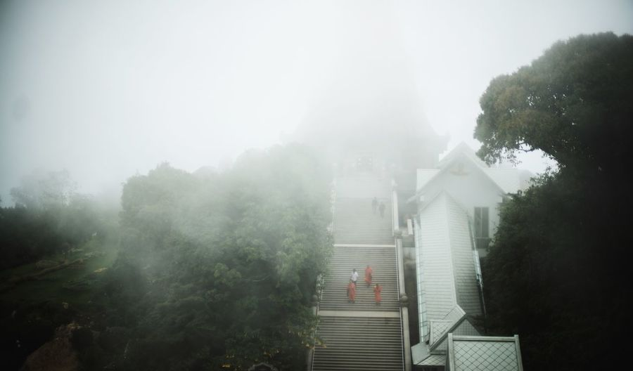 Monks On Steps During Foggy Weather