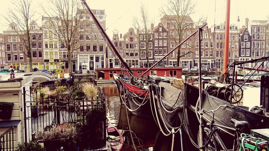 Houseboats In Amsterdam Houseboat Boat Built Structure Architecture Day Building Exterior Nature Outdoors City