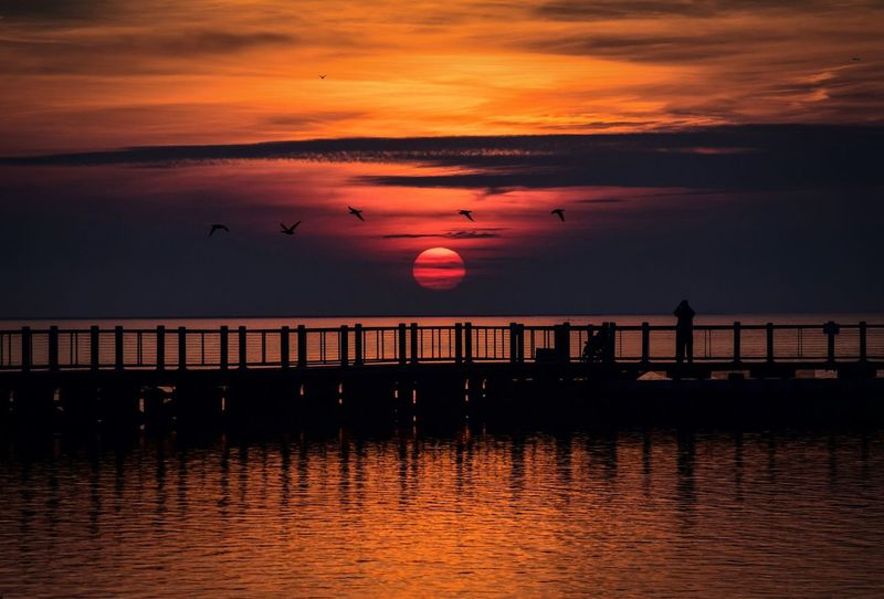 Waterside D3300 Pier Relaxing Hi! Nikon Colorful Ocean Silhouettes Sunset Longislandnewyork Exploreliny Seagulls Nature Nikonphotography New York Peaceful