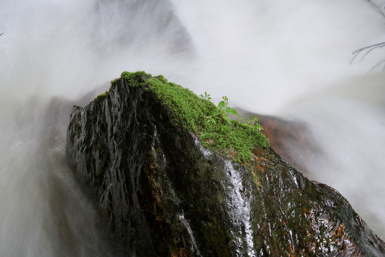 Beauty In Nature Blurred Motion Day Environment Flowing Flowing Water Land Long Exposure Motion Mountain Nature No People Outdoors Power Power In Nature Rainforest Frog Rock Rock - Object Rock Formation Scenics - Nature Solid Stream - Flowing Water Water Waterfall