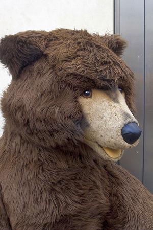 Animal Animal Head  Animal Themes Bear Curiosity Domestic Animals One Animal Portrait Relaxation Teddy Zoology