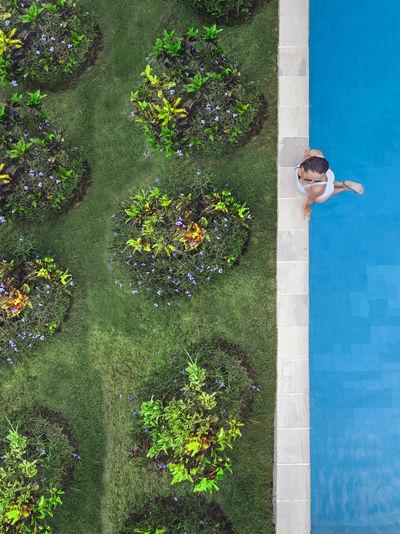 High angle view of woman by swimming pool at yard