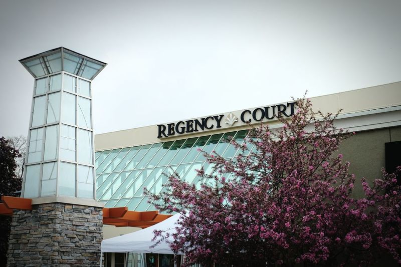 """""""Regency Courtoffers an upscale shopping and dining experience in the heart ofOmaha."""" - that means brings lots of money because everything is expensive. Most shopping malls dont sell anything I'm interested in, no bookstore, no music shop, no camera shop, no herbs and spices= no flavor: http://www.amazon.com/The-Long-Tail-Business-Selling/dp/1401302378 RePicture Wealth Shopping Cocktails Mall Long Tail A Day In The Life Omaha, Nebraska Jewelry Store Famous Places Consumerism"""