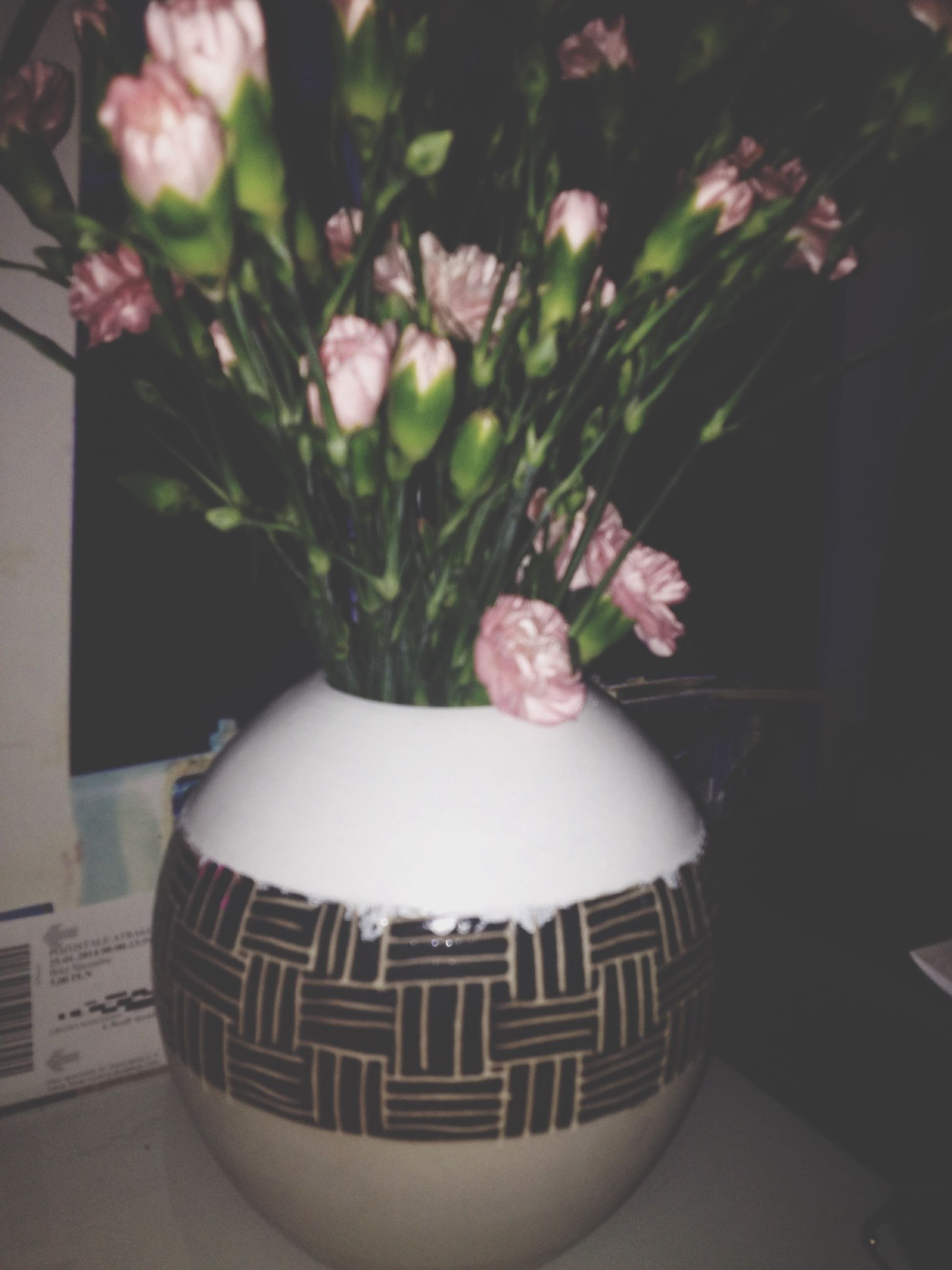 flower, indoors, white color, home interior, vase, plant, potted plant, freshness, close-up, table, holding, front view, decoration, fragility, growth, wall - building feature, day, bouquet