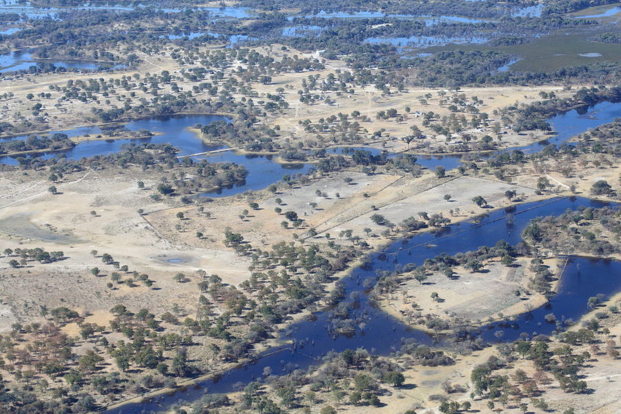 fly over Okavango Delta, Botswana Aerial View Africa Coastline Different Perspective Elevated View Everglade Idyllic Landscape Okavango Delta Outdoors Shore Top View Tourism Tranquil Scene Travel Destinations World From Above The Great Outdoors - 2016 EyeEm Awards On The Way A Bird's Eye View