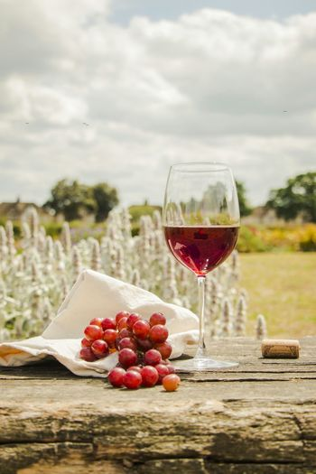 Red Grapes With Wineglass On Table At Field