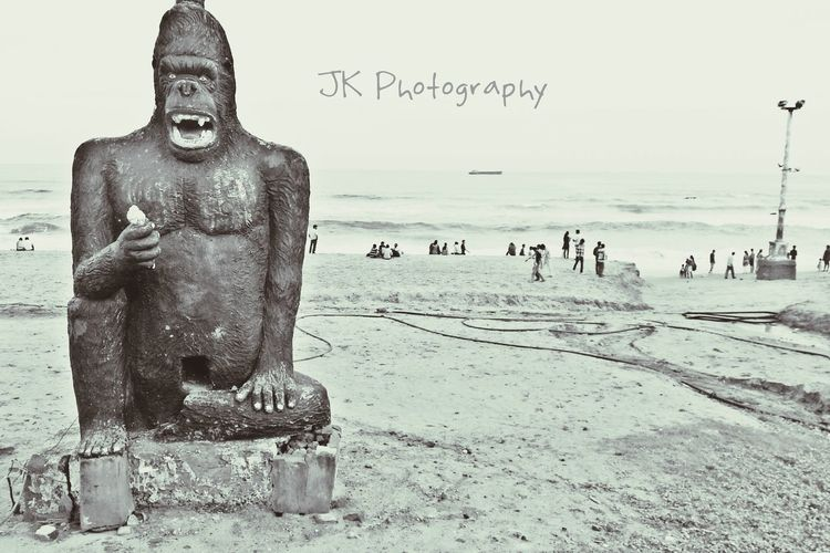 Traveling Gorillas black n white Seaside