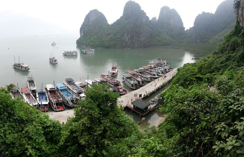 Ha Long South East Asia Vietnam Bay Beauty In Nature Day Green Color Ha Long Bay High Angle View Mode Of Transportation Moored Mountain Nature Nautical Vessel No People Outdoors Passenger Craft Plant Scenics - Nature Sea Transportation Travel Tree Water