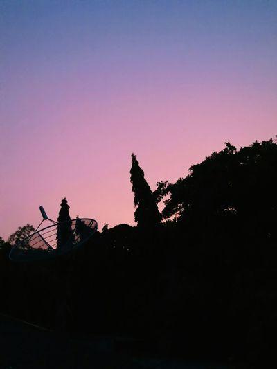 Serenity Rosequartz Twilight Dusk Pinksky Pinksunset Beautifulsky Learn & Shoot: After Dark BeautifulSunset Beautifulthings POTD Hello World what a rosy cloud :)